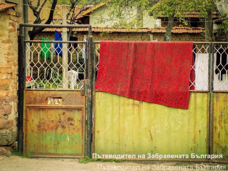 ФОТОГАЛЕРИЯ: Един ден в Кътина